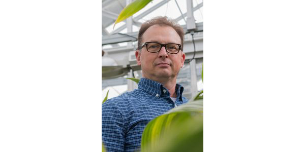 Shawn Kaeppler is a professor in the Department of Agronomy at UW-Madison College of Agricultural and Life Sciences. (Courtesy of University of Wisconsin-Extension)