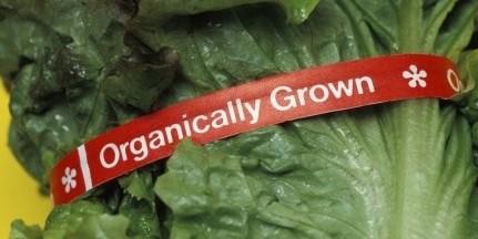 Organic Certification Cost Share Program