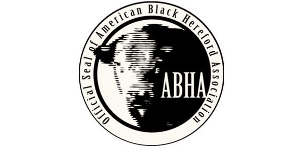 american black hereford