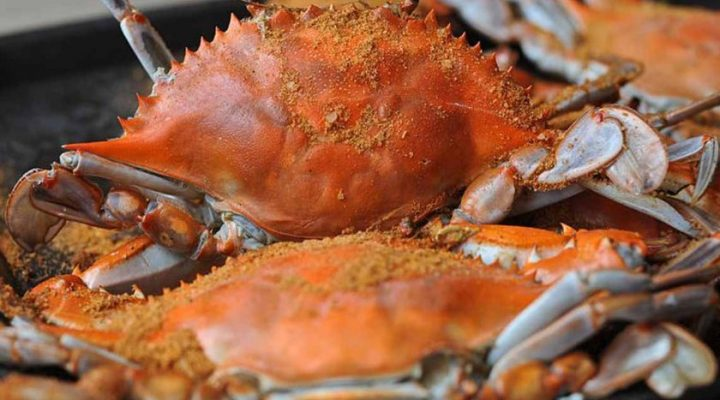 Seafood and Canning Show and Sale set for Feb. 18