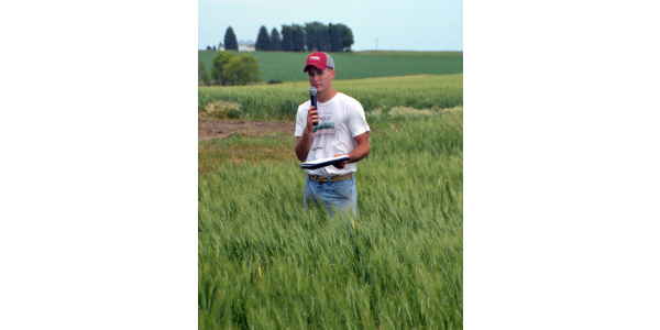 Nathan Anderson stands in a field of wheat on his farm.
