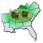 The Mid-South Stocker Conference is quickly approaching and the registration process is now available online. (Kentucky Cattlemen's Association)