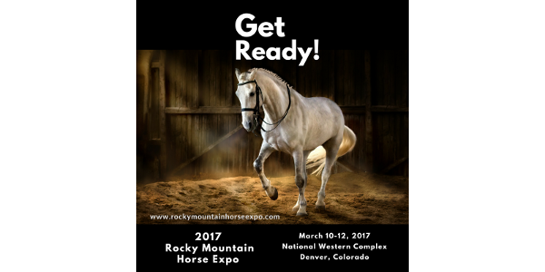 The Rocky Mountain Horse Expo is a dream-come-true for all horse lovers.