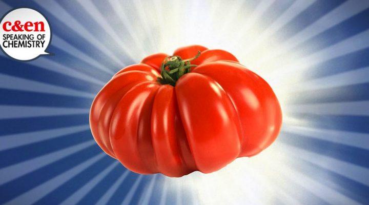 Making tomatoes taste awesome again
