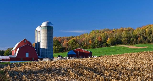 Three farmworker advocates arrested
