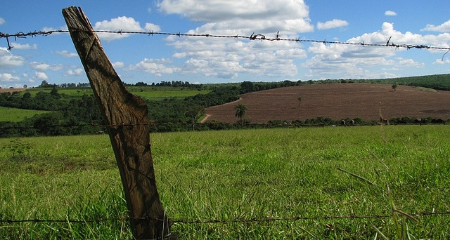 How to Lease Land to Farmers