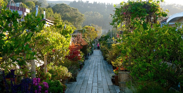 3rd Annual Horticultural Encounter