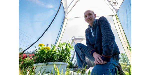 MSU entomologist David Smitley is working to provide the state's greenhouse and nursery growers with tools to make their plants more pollinator-friendly and marketable without sacrificing pest management. (Michigan State University)