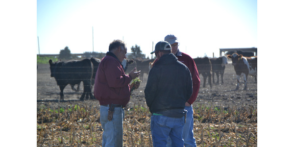 Mark Schleisman (left) with Ben Albright and Chris Clark. (Courtesy of Practical Farmers of Iowa)