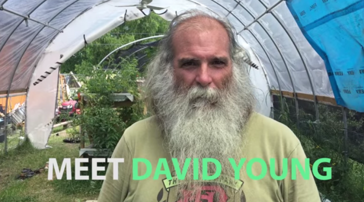 Man creates gardens in 30 abandoned lots