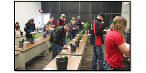 Ten colleges competed in the 2017 NCTA Crops Judging Contest on Saturday in Curtis, Neb. (Ramsdale/NCTA Photo)