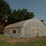 Kansas State University research has found that produce grown in high tunnels can have a longer shelf life than produce grown in open fields. (Courtesy of Kansas State University)