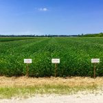 herbicide training