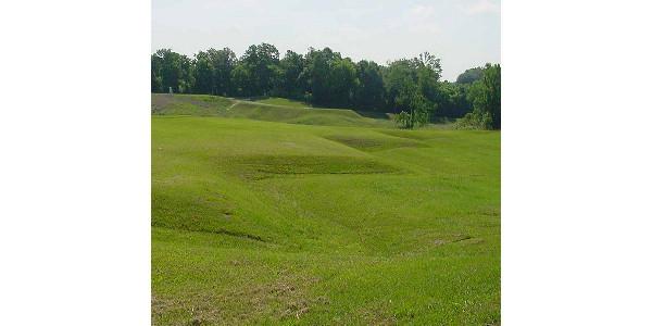 Burmuda grass at Vicksburg National Military Park in Vicksburg, Miss. (National Park Service via Flickr)