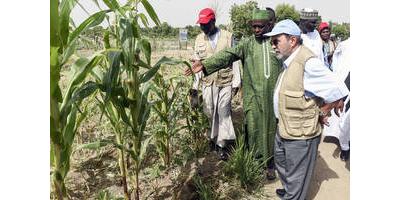 Lake Chad Basin needs lasting change