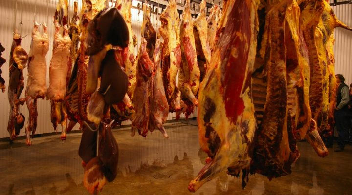 UMaine offers meat-cutting school