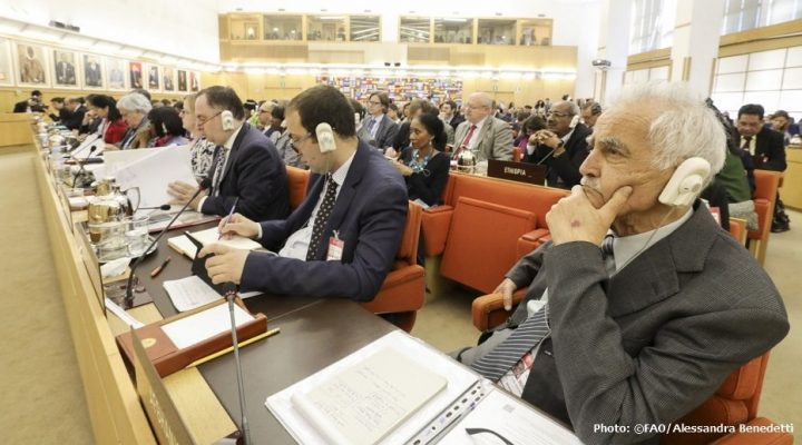 Famine in the spotlight at FAO Council