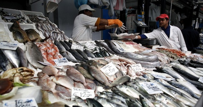 """Tracking fish """"from sea to plate"""""""