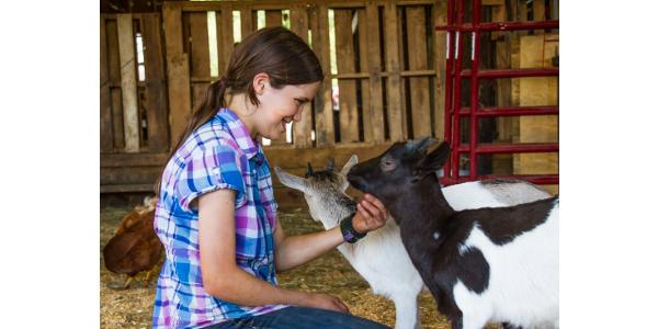 See baby barn animals. (Courtesy of Carolina Farm Stewardship Association)