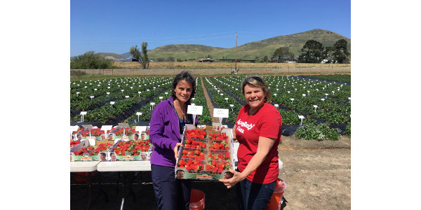 Cal Poly Strawberry Center touring with the Berry Health Symposium group. (Courtesy of Anne Geyer, Agriberry)