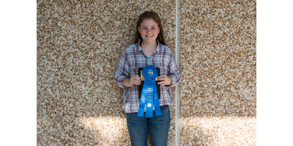 Hannah Williams, Union County- High Junior Individual in Halter. (Courtesy of NC State University)