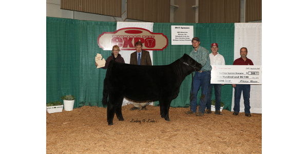 Lot 712, an AORB heifer consigned by Walnut Springs Farms of Hopkins, Mich. was the Supreme Champion Female at the 2017 Michigan Beef Expo.