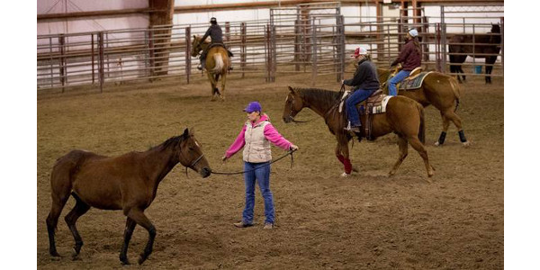 Ranch Horse Team hosts clinic April 7-9