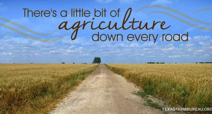 Explore agriculture on the backroads