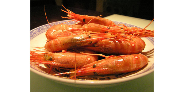 Nebraska farmers create shrimp habitats | Morning Ag Clips