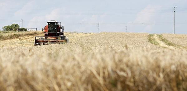 Increasing global food production