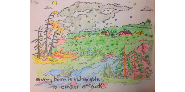 Coloring Contest Winners Announced Morning Ag Clips
