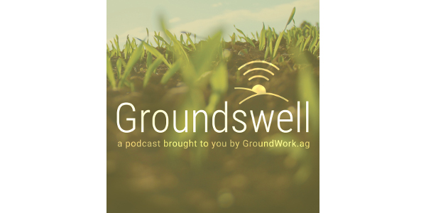 55983-4_GroundWork_Groundswell_coverart_1600x16002