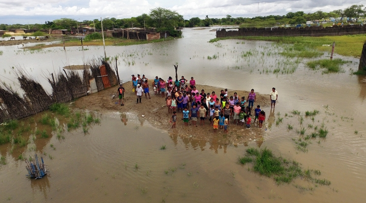 FAO helps farmers in Peru recover