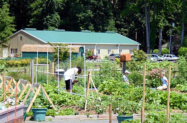 New Master Gardener program begins next week