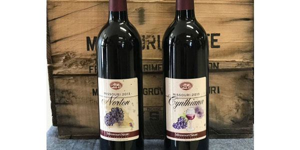 Norton is the official state grape of Missouri and Cynthiana is the official state grape of Arkansas. (Courtesy of Missouri State University)