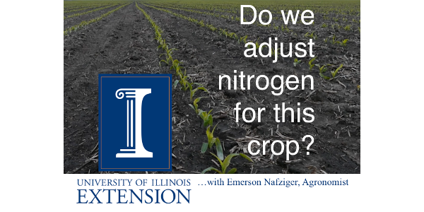 While it seems likely some nitrogen fertilizer has moved out of the upper soil as a result of rainfall this year University of Illinois Agronomist Emerson Nafziger says if soils dry out, the torrential rains stop, the sun shines, and the weather gets warmer things should be all good. (Courtesy of University of Illinois Extension)