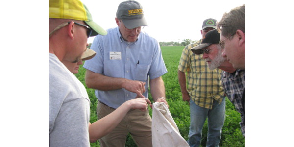 MU Extension specialist Tim Schnakenberg told how to scout fields for alfalfa weevils and potato leafhopper during a recent alfalfa tour in Ash Grove, Mo. (Credit: Photo by Linda Geist)
