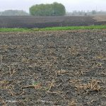 Avoid tillage and planting when soils are wet. (Courtesy of University of Minnesota Extension)