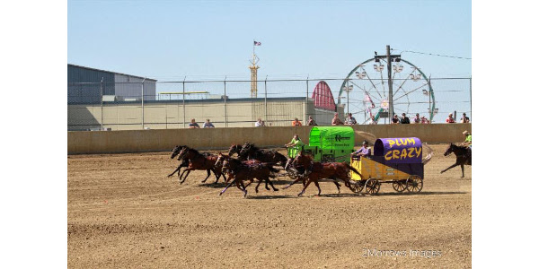 A long-standing Fair tradition, Chuckwagon Races will kick off dirt events Saturday, Sept. 9 and Sunday, Sept. 10 at noon on both days. (Courtesy of Clay County Fair)