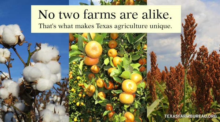Do you support Texas farmers?