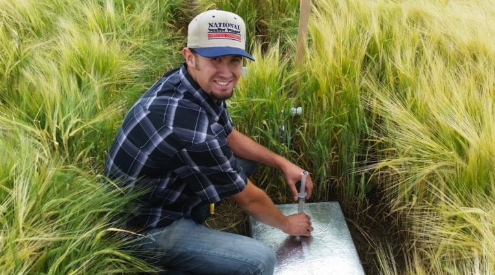 Evaluating emissions in irrigated crops