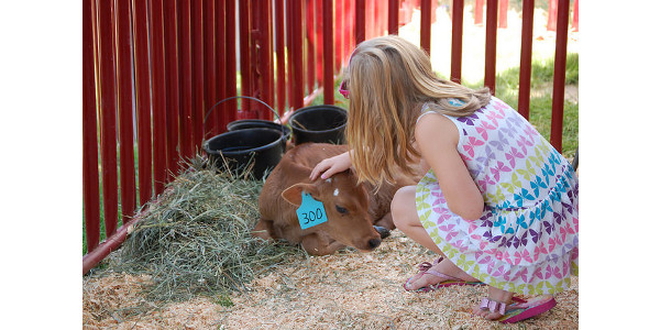 Agritourism safety and best practices