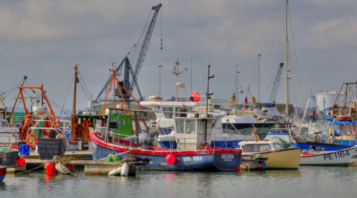 Bill aims to attract young fishermen