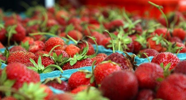FCE grants support farmers' markets