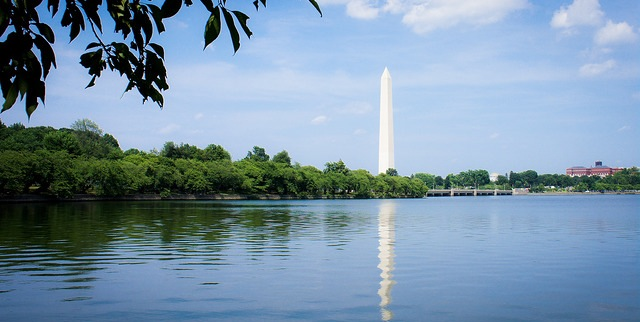 Cattlemen go to Washington, D.C.