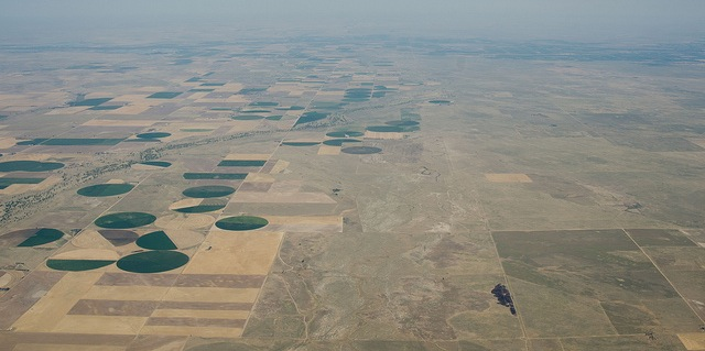 The impact of major crop collapse