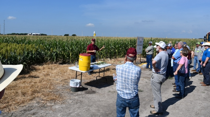 54th Stiles Farm Field Day held