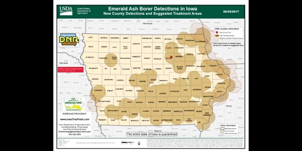 Iowa EAB Pos Sites 062917