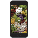 This summer Illinois consumers can use their smartphones to see what is currently in season wherever they happen to be. (Courtesy of Connect Fresh Illinois)