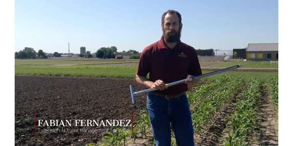 Extension Nutrient Management Specialist Fabian Fernandez explains how to perform PSNT. (screenshot from video)